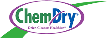 The Plains Chem-Dry Logo